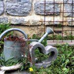 Zorg In de Tuin, water, klimplanten, tuinhulp
