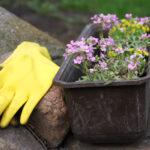 werkhandschoenen, aan de slag, Zorg In De Tuin, bloembakken