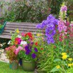 Zorg In De Tuin, kleurrijk, bloemen, genieten, tuinbank