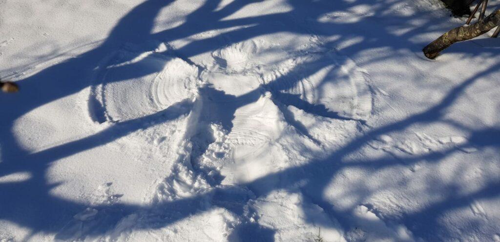 sneeuwengel, Zorg In De Tuin, beschermengel, appelboom